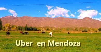 Uber en Mendoza